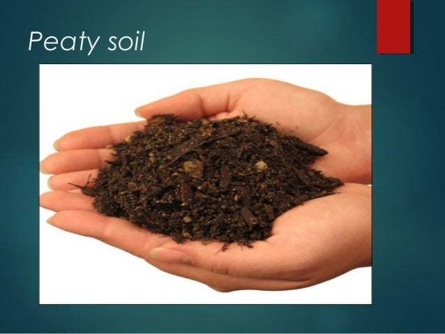 Different types if soil for Where to find soil