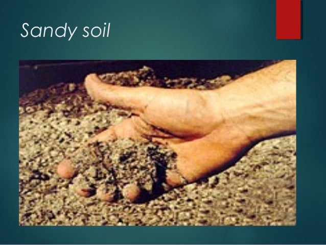 Different types if soil for Soil quality definition