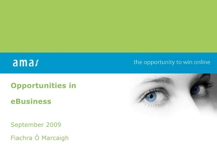Opportunities in eBusiness  September 2009 Fiachra Ó Marcaigh www.amas.ie