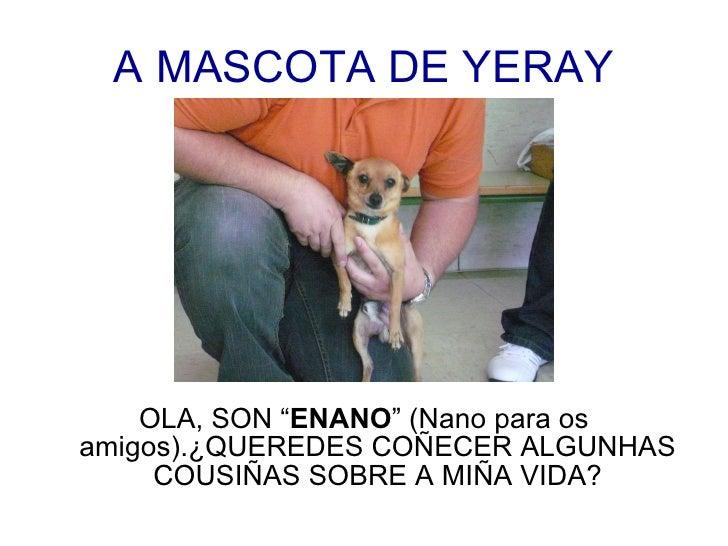 """A MASCOTA DE YERAY <ul><li>OLA, SON """" ENANO """" (Nano para os amigos).¿QUEREDES COÑECER ALGUNHAS COUSIÑAS SOBRE A MIÑA VIDA?..."""