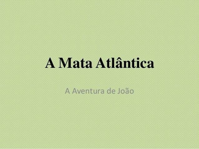 A Mata Atlântica A Aventura de João