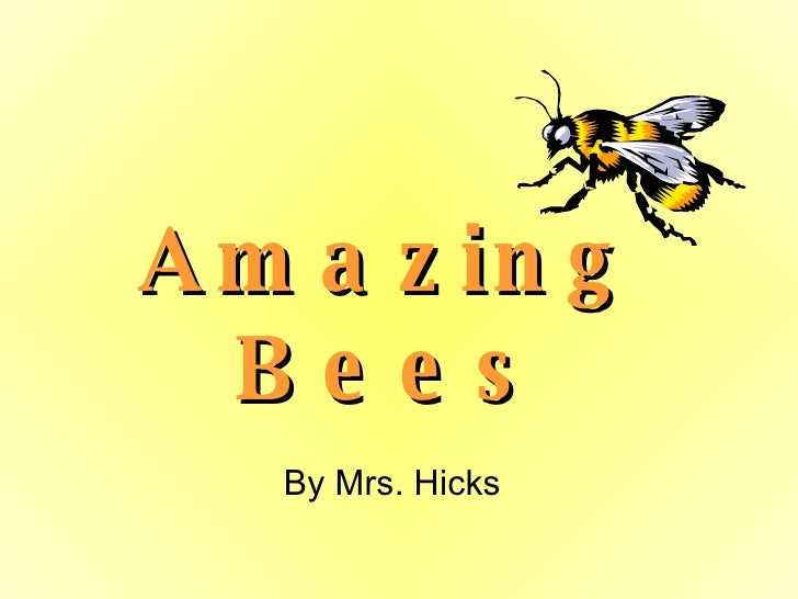Amazing Bees By Mrs. Hicks