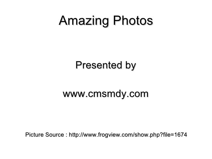 Amazing Photos Presented by www.cmsmdy.com Picture Source : http://www.frogview.com/show.php?file=1674