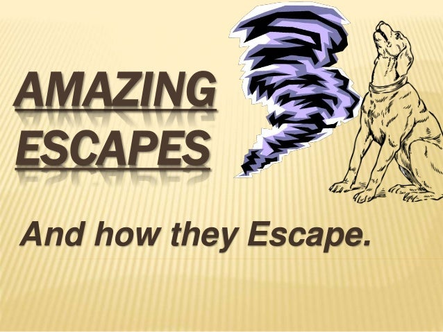 AMAZING ESCAPES And how they Escape.