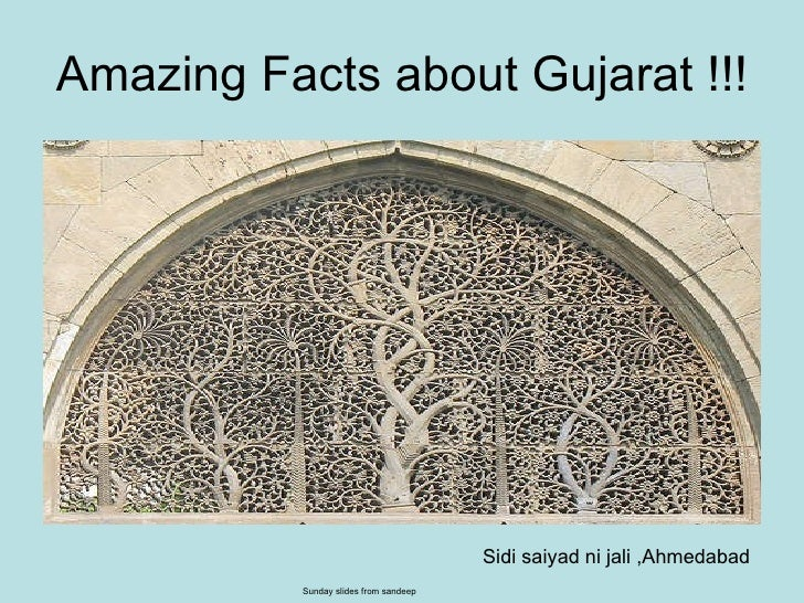 Amazing Facts about Gujarat !!! Sidi saiyad ni jali ,Ahmedabad Sunday slides from sandeep