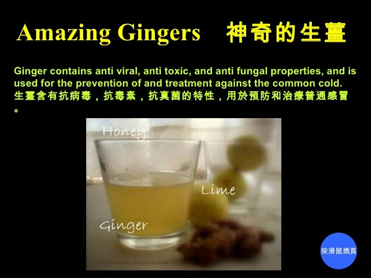 Amazing Gingers 神奇的生薑Ginger contains anti viral, anti toxic, and anti fungal properties, and isused for the prevention of ...