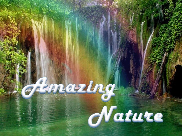 Amazing<br />Nature<br />