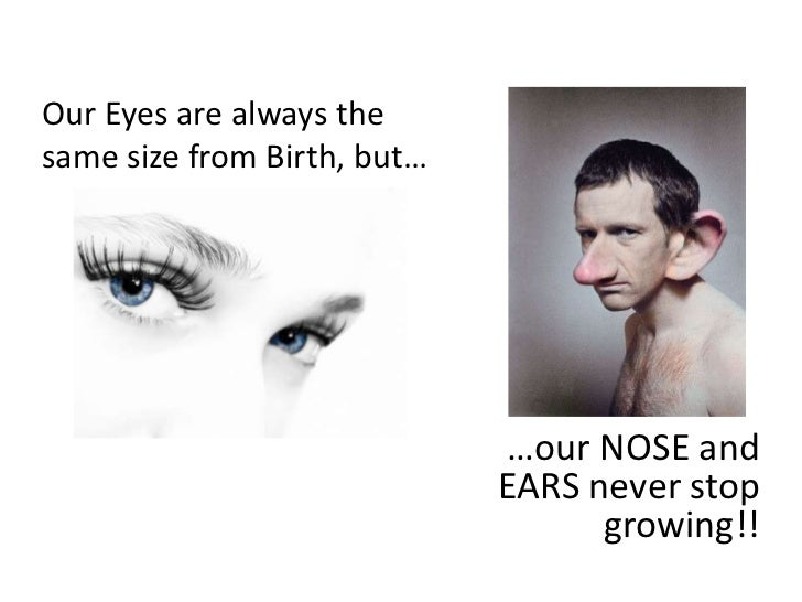 Our Eyes are always the same size from Birth, but…<br />…our NOSE and EARS never stop growing!!<br />