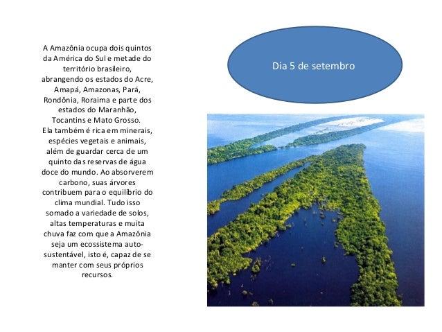 A Amazônia ocupa dois quintos da América do Sul e metade do território brasileiro, abrangendo os estados do Acre, Amapá, A...