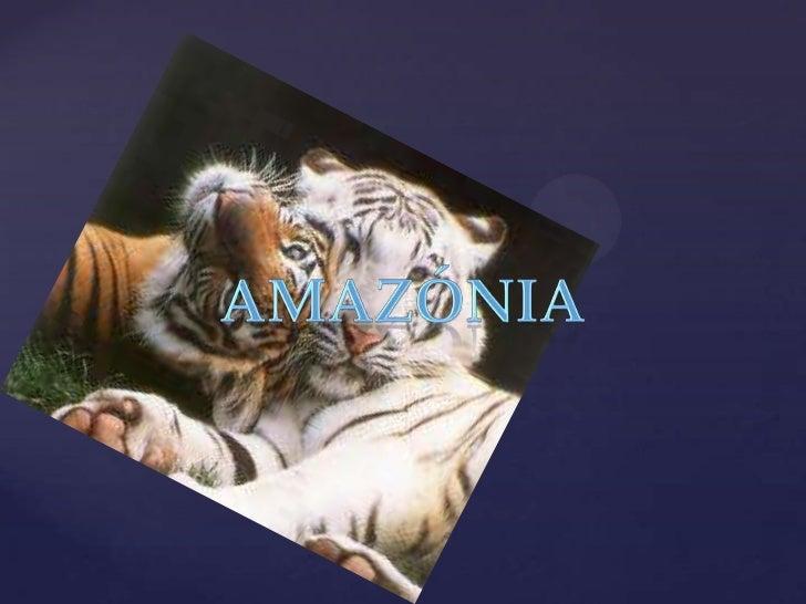 Amazónia<br />