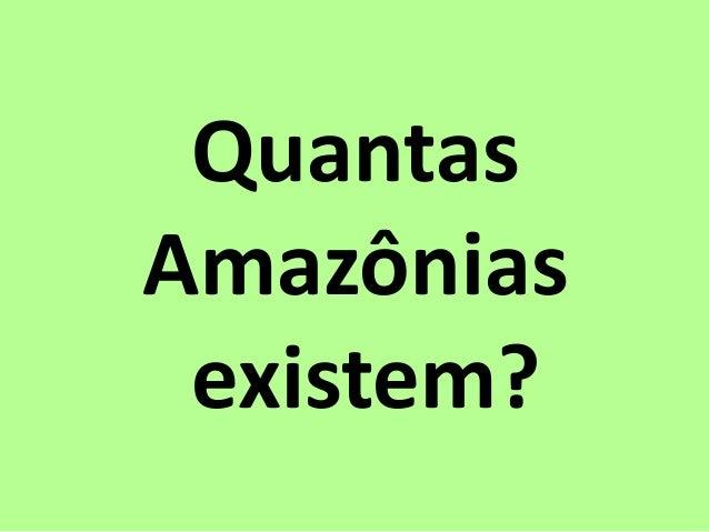 Quantas Amazônias existem?