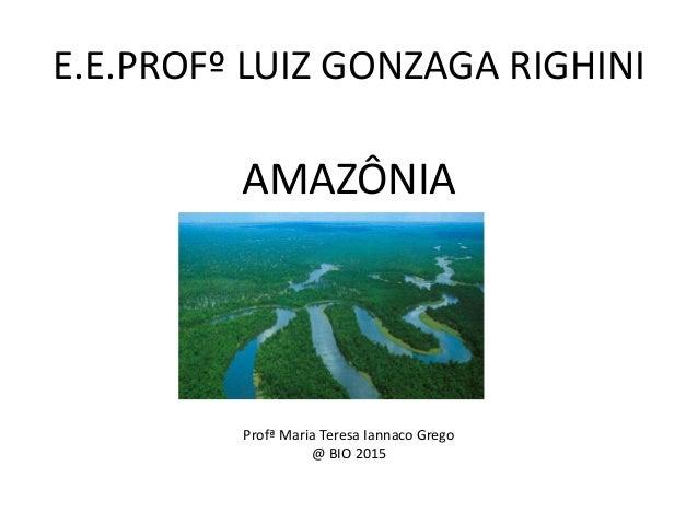 E.E.PROFº LUIZ GONZAGA RIGHINI AMAZÔNIA Profª Maria Teresa Iannaco Grego @ BIO 2015