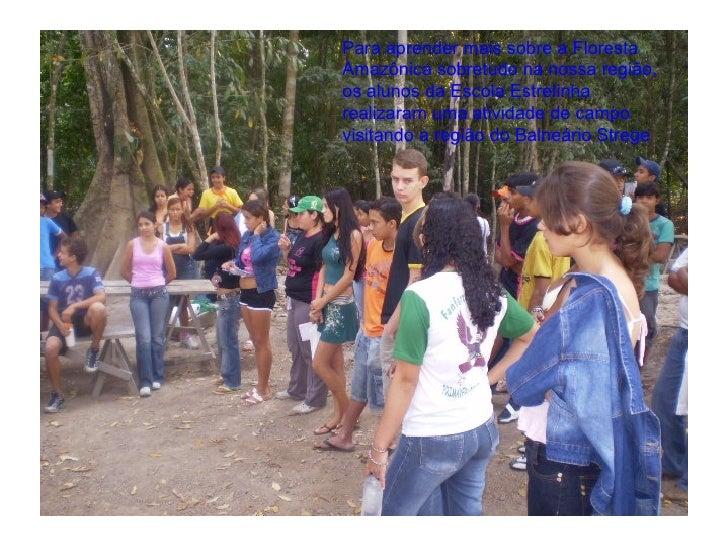 Para aprender mais sobre a Floresta Amazônica sobretudo na nossa região, os alunos da Escola Estrelinha realizaram uma ati...