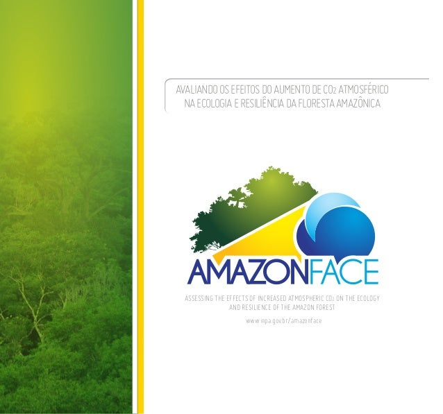 Avaliandoosefeitosdoaumentodeco2atmosférico naecologiaeresiliênciadaflorestaamazônica Assessing the effects of increased a...