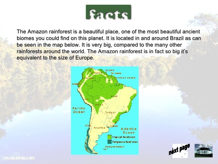 Amazon rainforest presentation 5 728gcb1178192590 5 the amazon rainforest gumiabroncs Choice Image