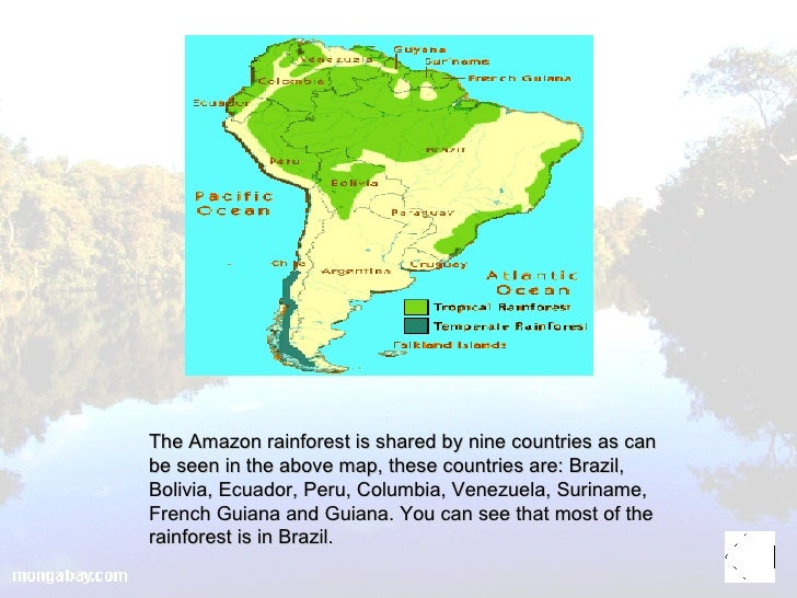 Amazon rainforest presentation 6 the amazon rainforest gumiabroncs Choice Image