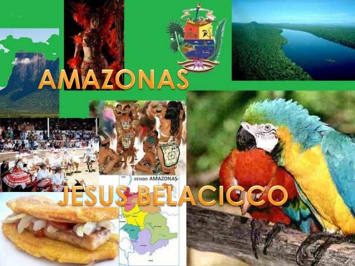 AMAZONAS<br />JESUS BELLACICCO<br />AMAZONAS<br />JESUS BELACICCO<br />