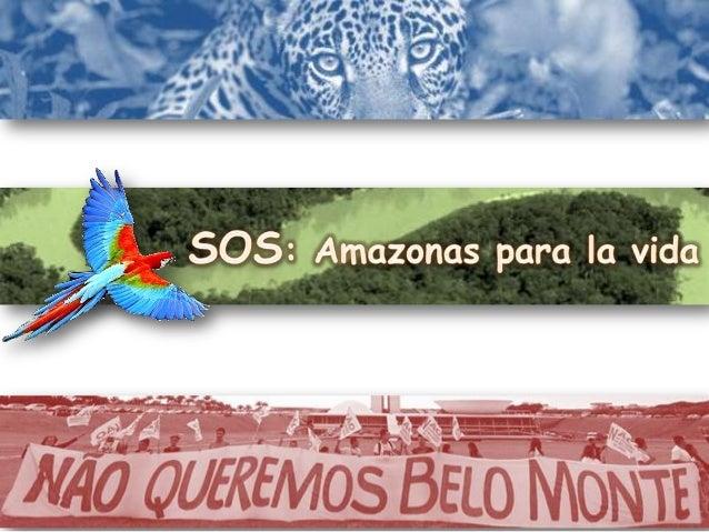 Patrimonio de la Humanidad La Amazonia, también denominada Amazonía, es una vasta región de la parte central y septentrion...