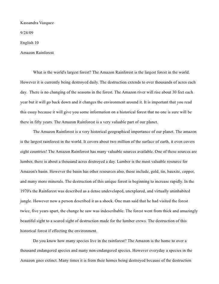 a day in the forest essay