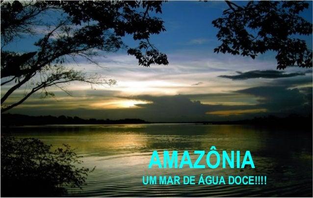AMAZÔNIA UM MAR DE ÁGUA DOCE!!!!