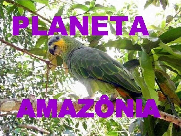 AMAZÔNIA PLANETA