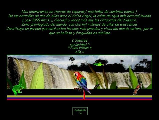 Nos adentramos en tierras de tepuyes ( montañas de cumbres planas ) De las entrañas de uno de ellos nace el Salto Ángel, l...