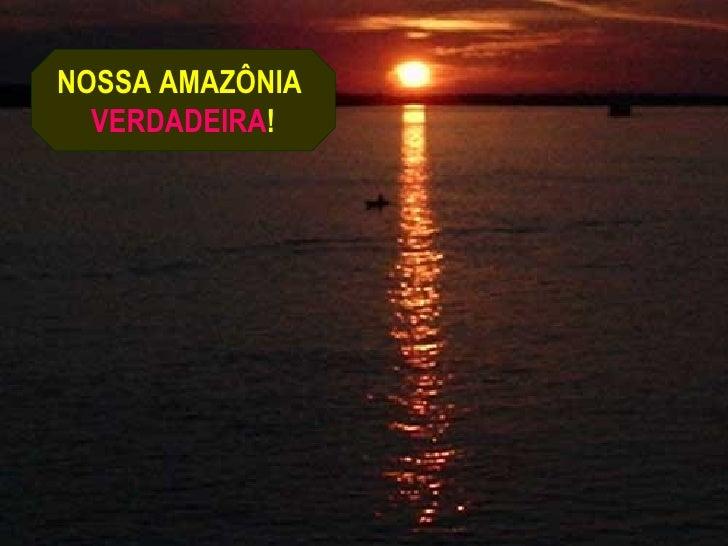 NOSSA AMAZÔNIA  VERDADEIRA!