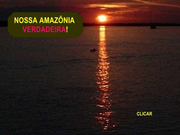 NOSSA AMAZÔNIA  VERDADEIRA ! CLICAR