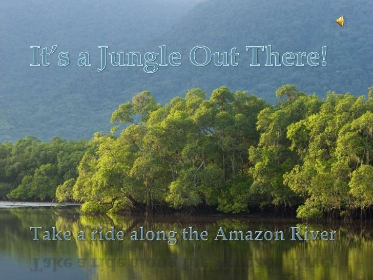 Photo Album<br />by krista.saulter<br />It's a Jungle Out There!<br />Take a ride along the Amazon River <br />