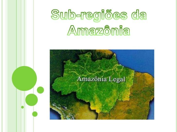 Subdivisão Regional da Amazônia