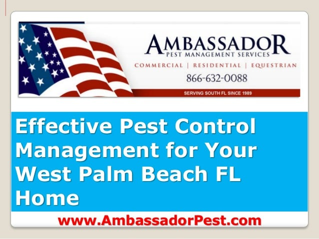 Effective Pest ControlManagement for YourWest Palm Beach FLHome   www.AmbassadorPest.com
