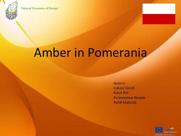 Amber in Pomerania Autors: Łukasz Gocał  Karol Kot  Przemysław Nowak Rafał Matczak Natural Treasures of Europe