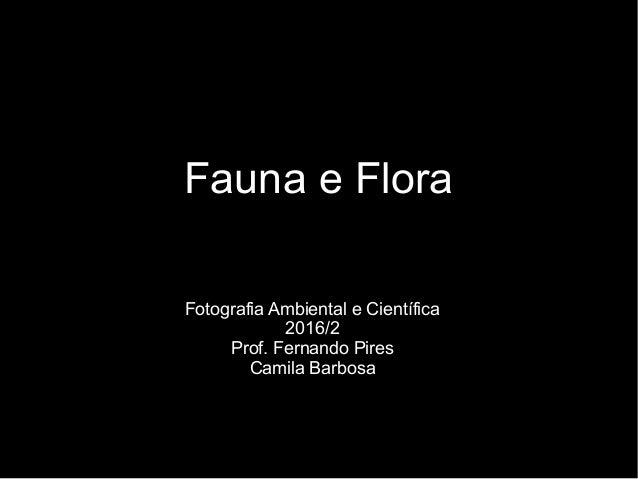 Fauna e Flora Fotografia Ambiental e Científica 2016/2 Prof. Fernando Pires Camila Barbosa