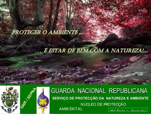 .. DEPENDE DE TODOS GNR /SEPNA GUARDA NACIONAL REPUBLICANAGUARDA NACIONAL REPUBLICANA SERVIÇO DE PROTECÇÃO DA NATUREZA E A...