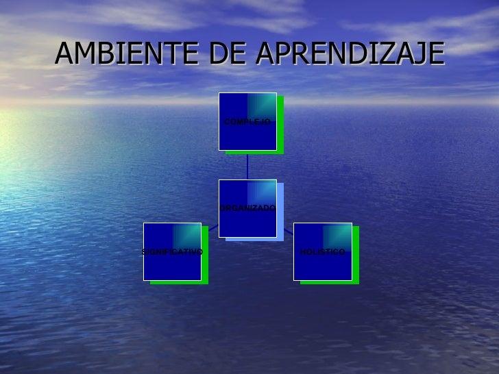 AMBIENTE DE APRENDIZAJE SIGNIFICATIVO HOLISTICO COMPLEJO ORGANIZADO