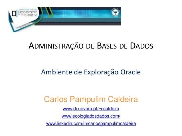 ADMINISTRAÇÃO DE BASES DE DADOS Ambiente de Exploração Oracle Carlos Pampulim Caldeira www.di.uevora.pt/~ccaldeira www.eco...