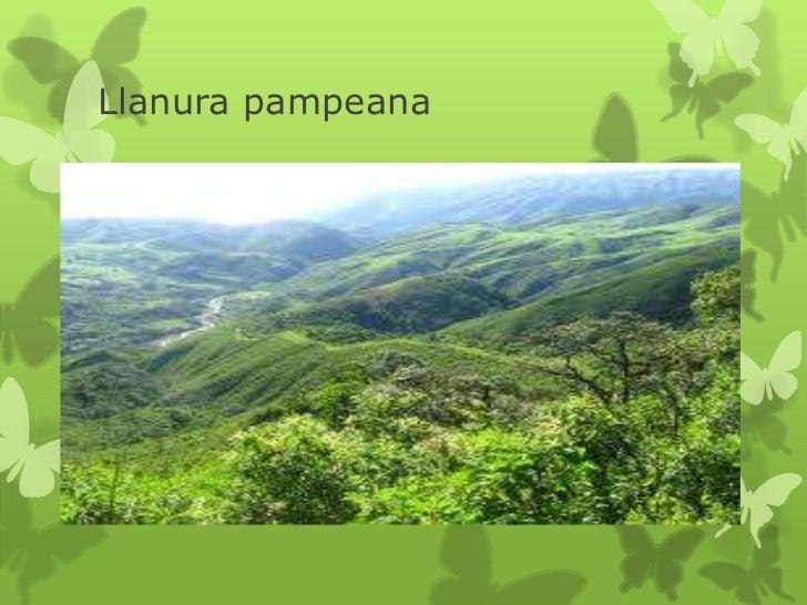 pdf Reviews of Environmental