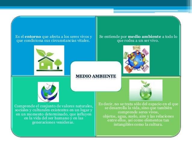 Ambiente medio ambiente y sus componentes for Que elementos conforman el suelo