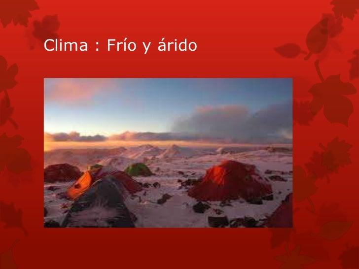 Ambiente monta oso de argentina for Ambientes de argentina
