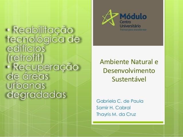 Ambiente Natural e Desenvolvimento Sustentável Gabriela C. de Paula Samir H. Cabral Thayris M. da Cruz • Reabilitação tecn...