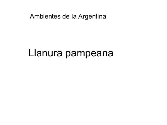 Ambientes de la argentina llanura pampeana for Ambientes de argentina