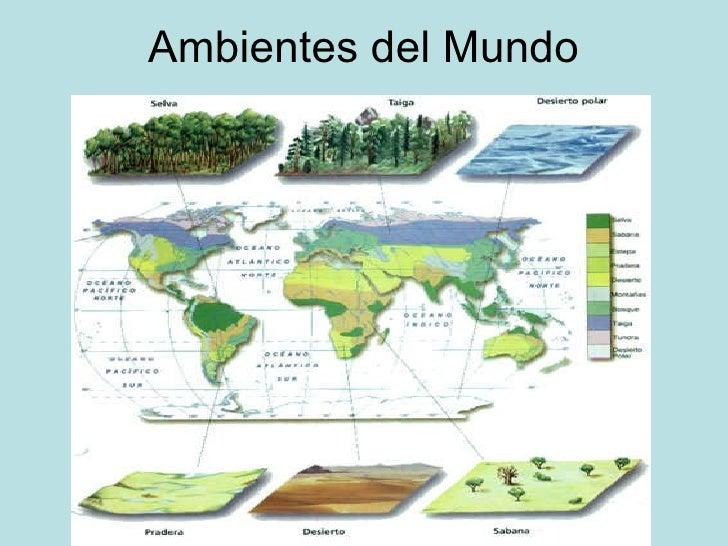 Ambientes del Mundo