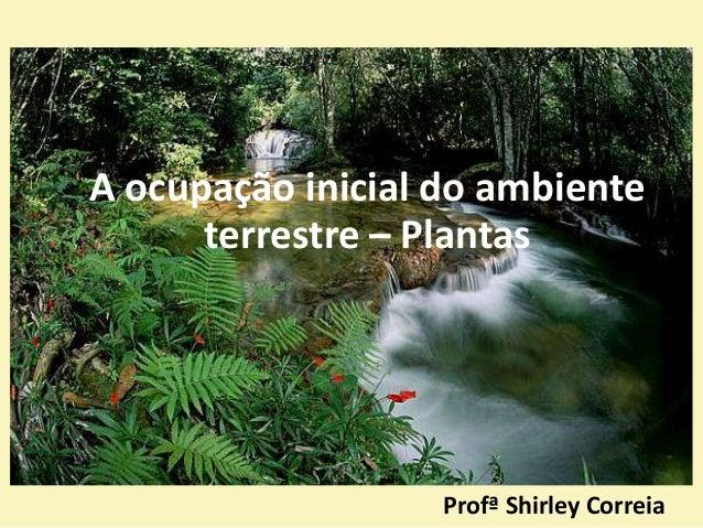 Profª Shirley Correia A ocupação inicial do ambiente terrestre – Plantas