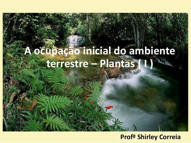 Profª Shirley Correia A ocupação inicial do ambiente terrestre – Plantas ( I )