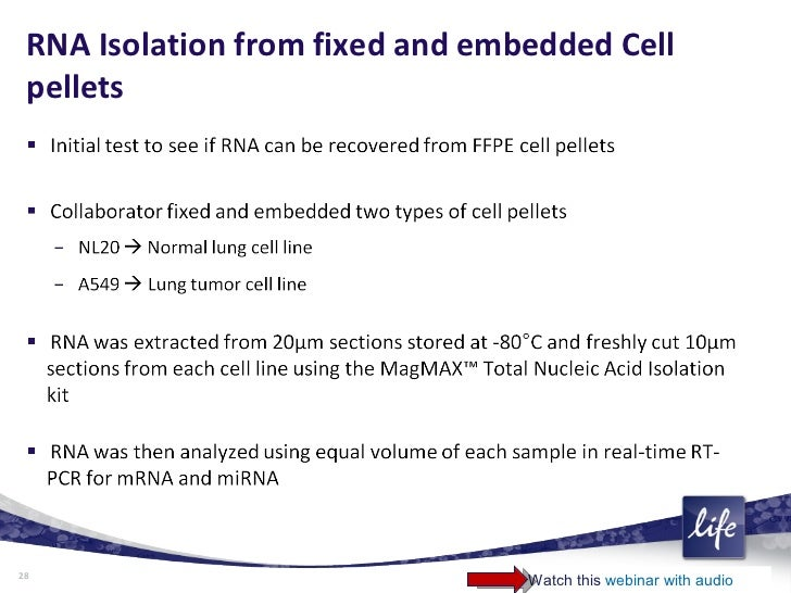 Extraction of Nucleic Acid From FFPE Tissue Samples