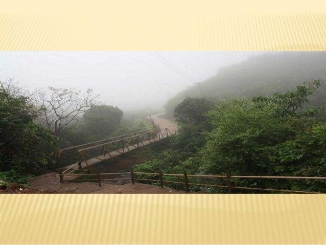 Amboli hill station