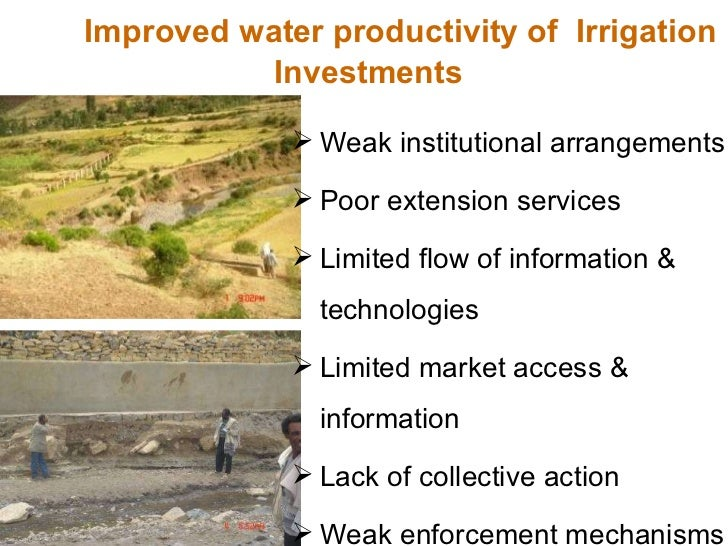 Improved water productivity of  Irrigation  Investments <ul><li>Weak institutional arrangements </li></ul><ul><li>Poor ext...