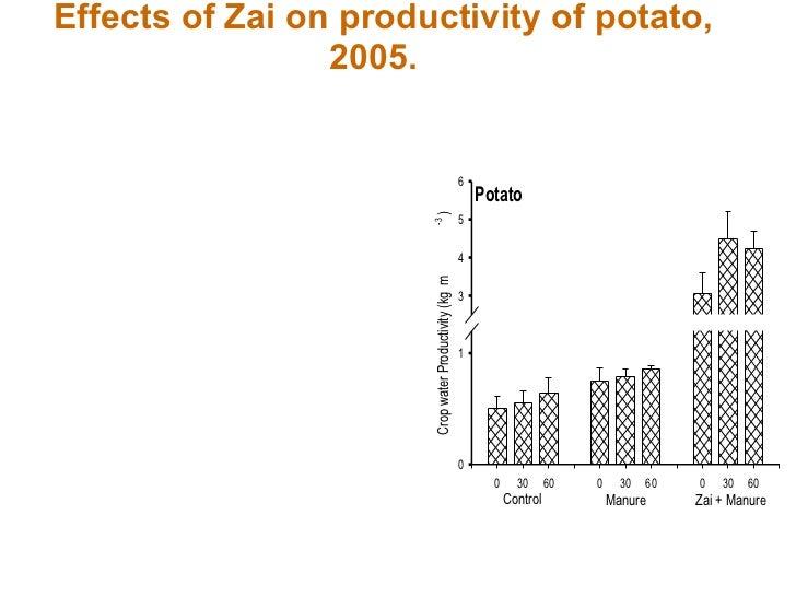 Effects of Zai on productivity of potato, 2005.