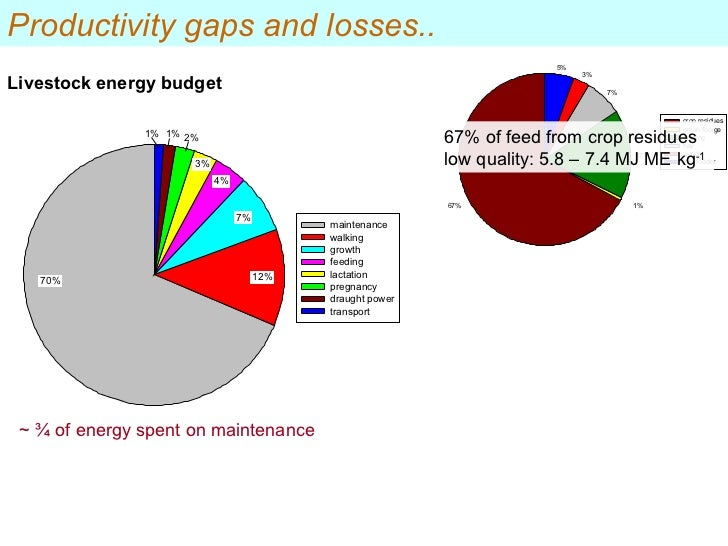 ~ ¾ of energy spent on maintenance Livestock energy budget 67% of feed from crop residues  low quality: 5.8 – 7.4 MJ ME kg...