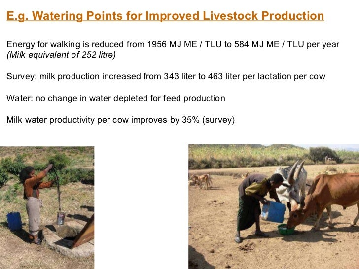 E.g. Watering Points for Improved Livestock Production Energy for walking is reduced from 1956 MJ ME / TLU to 584 MJ ME / ...